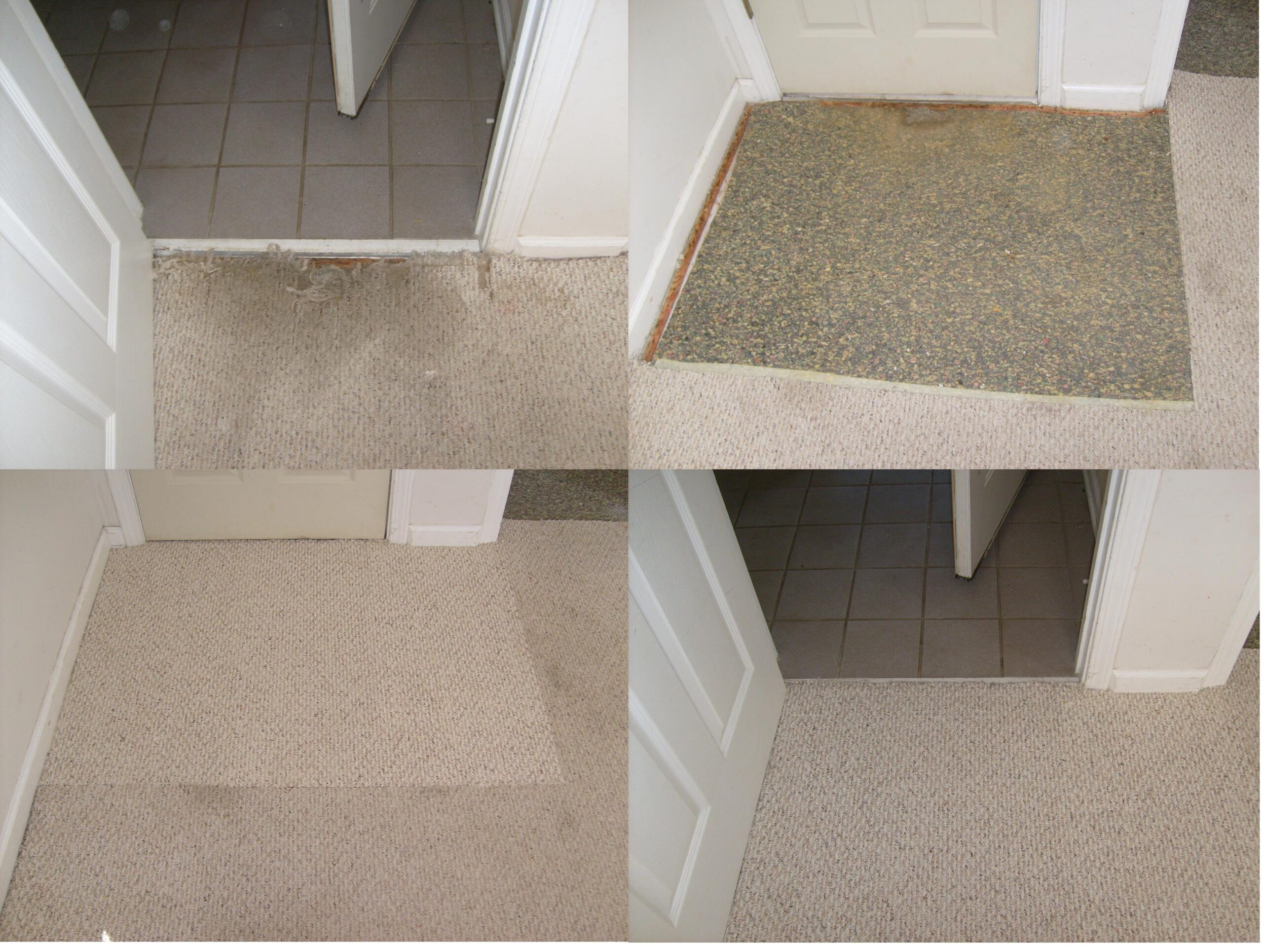 Carpet repair threshold pet damage 4 pic
